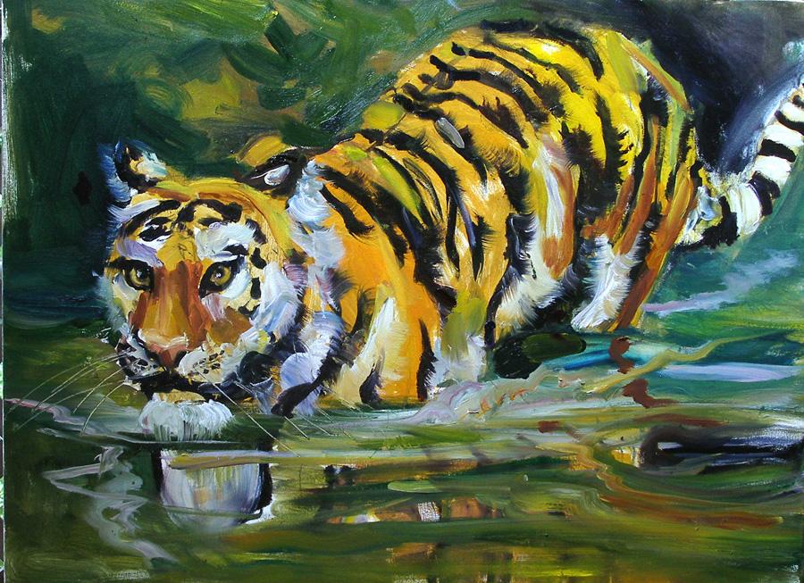 tigrewade3_web