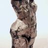torso-1a